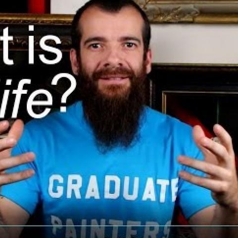 What is Still Life? Cesar Santos vlog 007